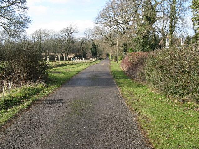 Wellhouse Lane approaching Ockley Lane
