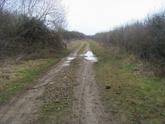 Bridleway to Gallos Brook Ford