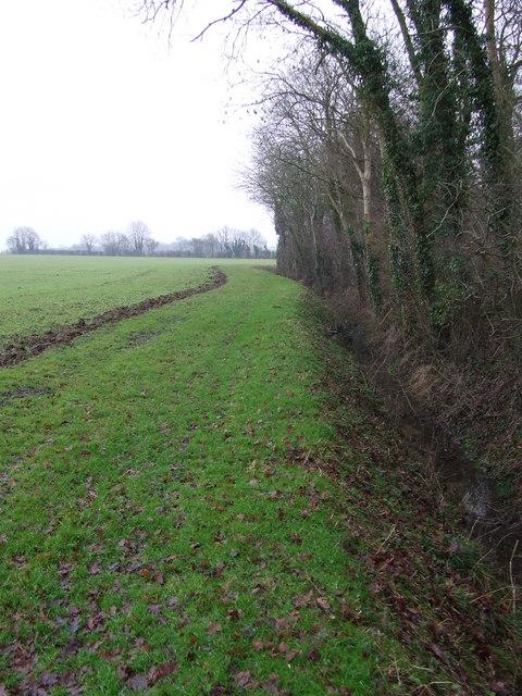 Wood Boundary