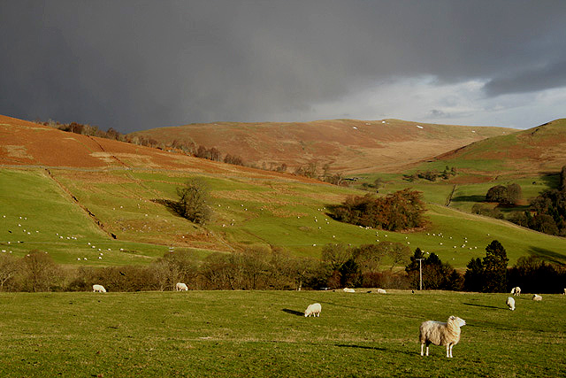 Farmland at Hillhead