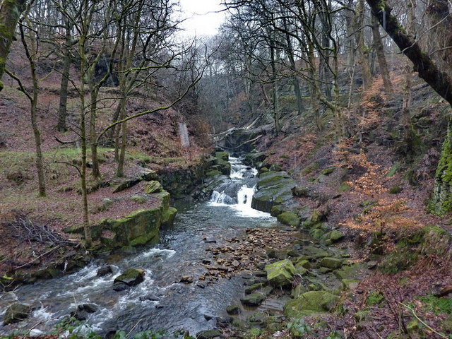 River Spodden , Healey Dell