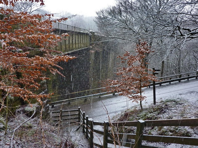 Dell Road as it passes under Spodden Viaduct