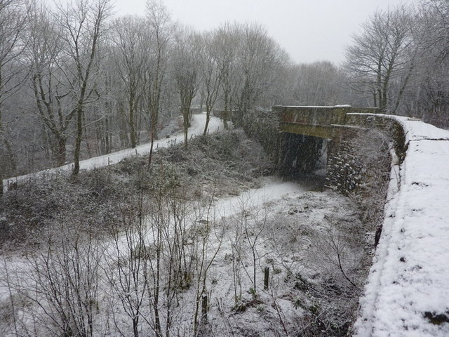 Site of Broadley Railway Station