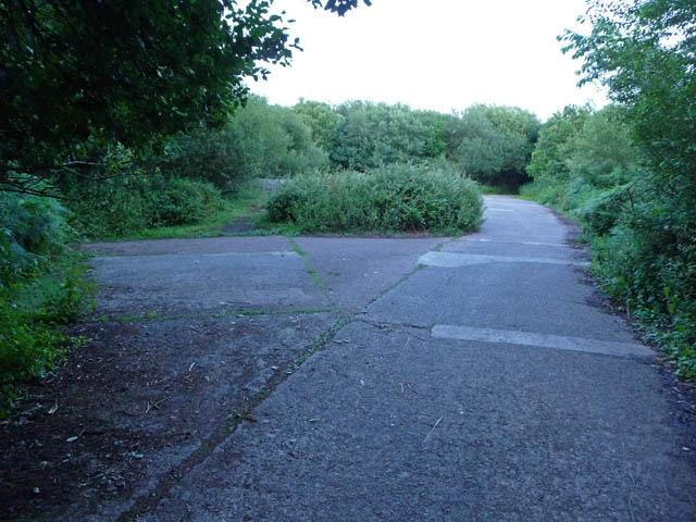 Wartime concrete - Moor Wood