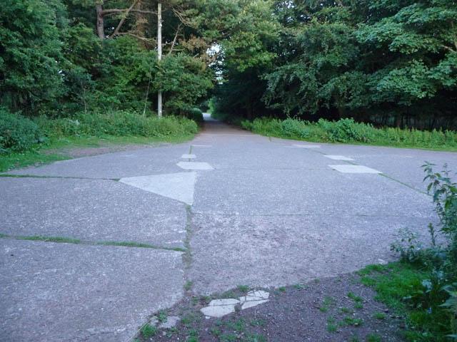 Wartime concrete in Moor Wood