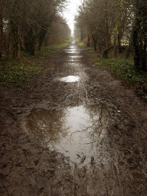 Mud on the Line