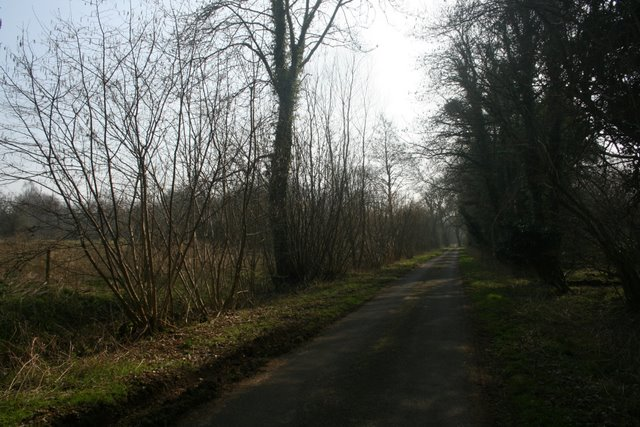 Butter's Hall Lane