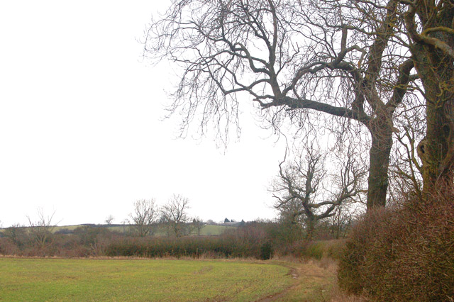 Footpath from Upper Shuckburgh to Flecknoe (1)