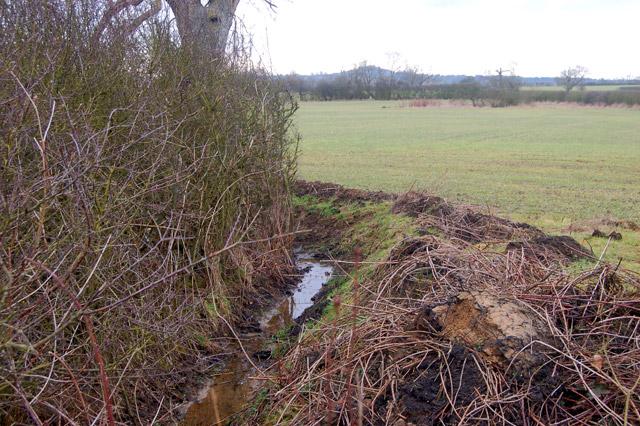 Recently dredged drainage ditch near Upper Shuckburgh