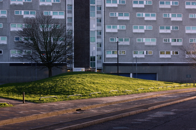 Grassy knoll north of Shirley Towers