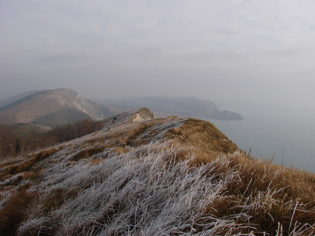 Worbarrow Bay from winterly Bindon Hill