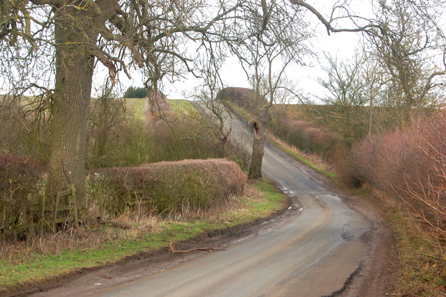 Looking north on the lane from the A425 to Flecknoe