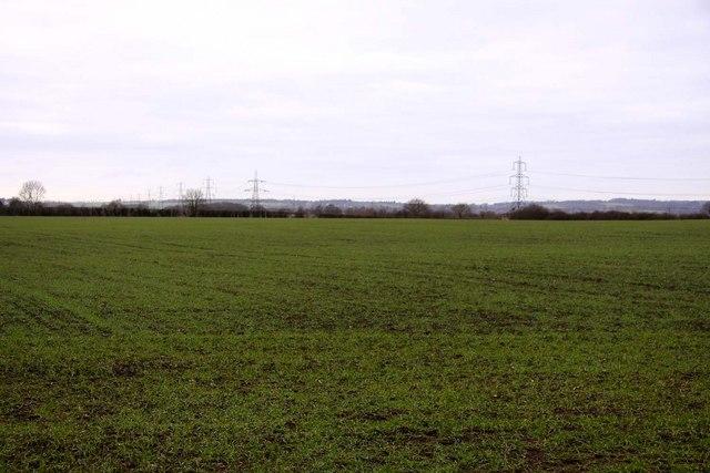 Field near Thomley Hall Farm