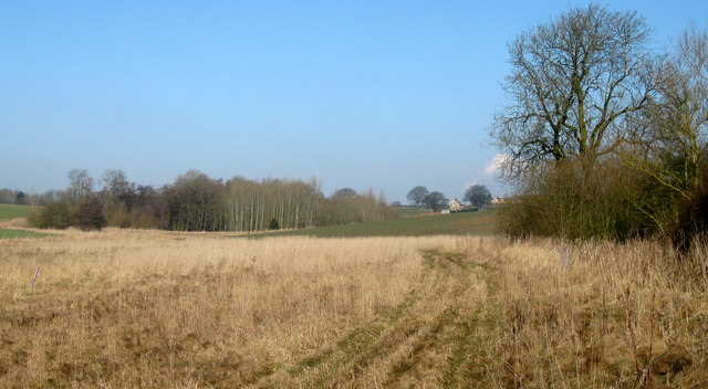 Wykeham Plantation