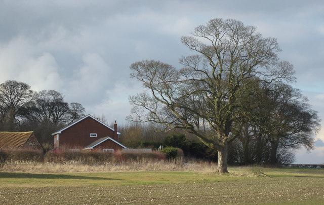 Tows Farm