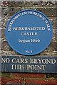 Photo of Berkhamsted Castle blue plaque