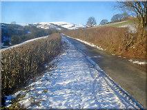SO2454 : Lane to Gladestry by Trevor Rickard