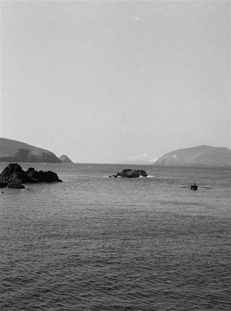 Currach in Blasket Sound - 1960