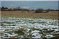 SP0940 : Farmland near Willersey by Philip Halling