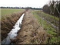 TL4364 : Water-filled ditch alongside Gun's Lane by Peter S