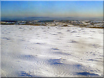 SO2656 : Snow-covered plateau on Hergest Ridge by Trevor Rickard