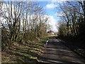 SX3380 : Lane at Trewarlett by Derek Harper