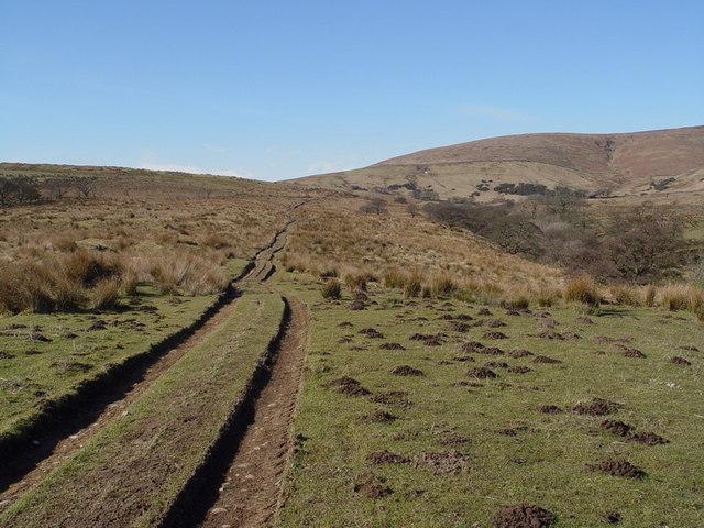 Track From Lickhurst Farm