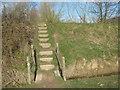 TQ8931 : Steps near Usher Wood Lake Embankment by David Anstiss