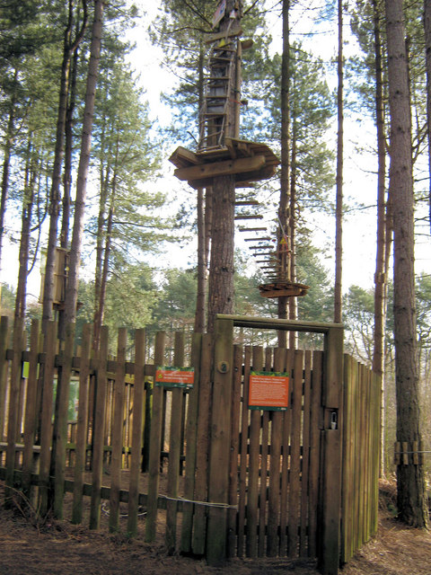 Start of the Go Ape course