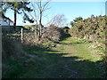 SZ0695 : Bournemouth : Grassy Path, Fernheath Valley by Lewis Clarke
