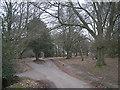 SP1096 : Road near Holly Hurst by Row17