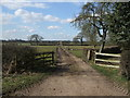 SJ6545 : Track from Monks Hall Farm towards Bridge 80 - Audlem by Richard Hoare