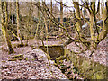 SD8114 : Ruins by David Dixon