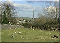 ST6560 : 2010 : Hobb's Wall, near Farmborough by Maurice Pullin