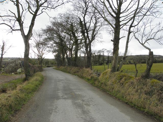Road at Aughalenty