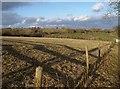 SX0759 : Field near Roselath by Derek Harper