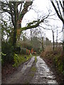 SX3777 : Lane at Trecombe by Rod Allday