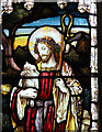 TM1581 : The church of St Andrew in Thelveton - stained glass (detail) : Week 12