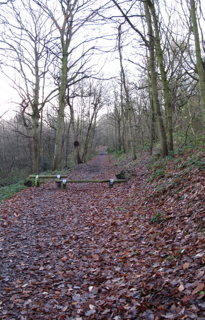 A path through Woolley Wood, Wincobank