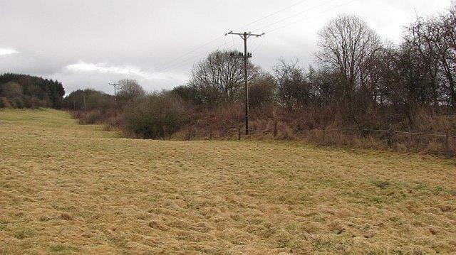 Grassland, Doune