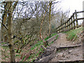 SD7704 : Clifton Country Park - Kingfisher Trail by David Dixon