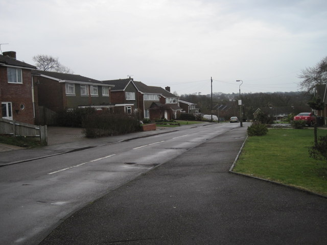 Houses on Towerscroft Avenue