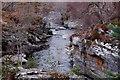 NN7899 : Downstream from Tromie Bridge : Week 12