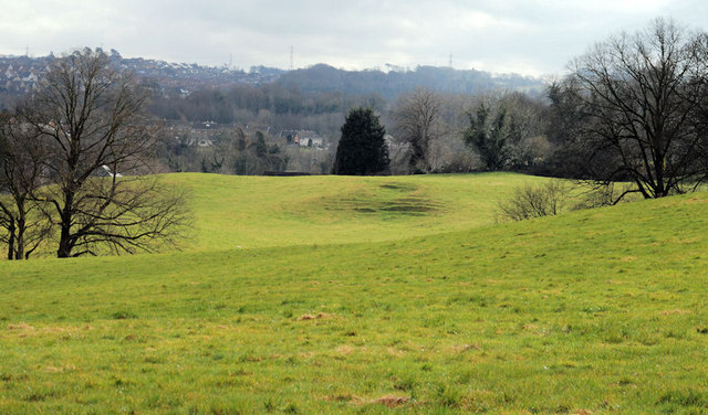 Field, Minnowburn, Belfast (1)