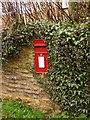 ST4805 : Chedington: postbox № DT8 98 by Chris Downer