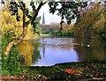 SD8201 : Clowes Park by Edward Smith