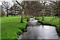 TQ2965 : Beddington Park:  River Wandle by Dr Neil Clifton