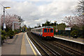 TQ1976 : Arriving at Kew Gardens : Week 14