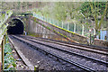 TQ2909 : Patcham Tunnel, north end by Robin Webster