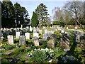 SP5201 : St Swithun's Churchyard, Parish Cemetery by David P Howard